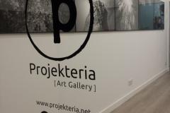 Projekteria art gallery opening inauguració (7)