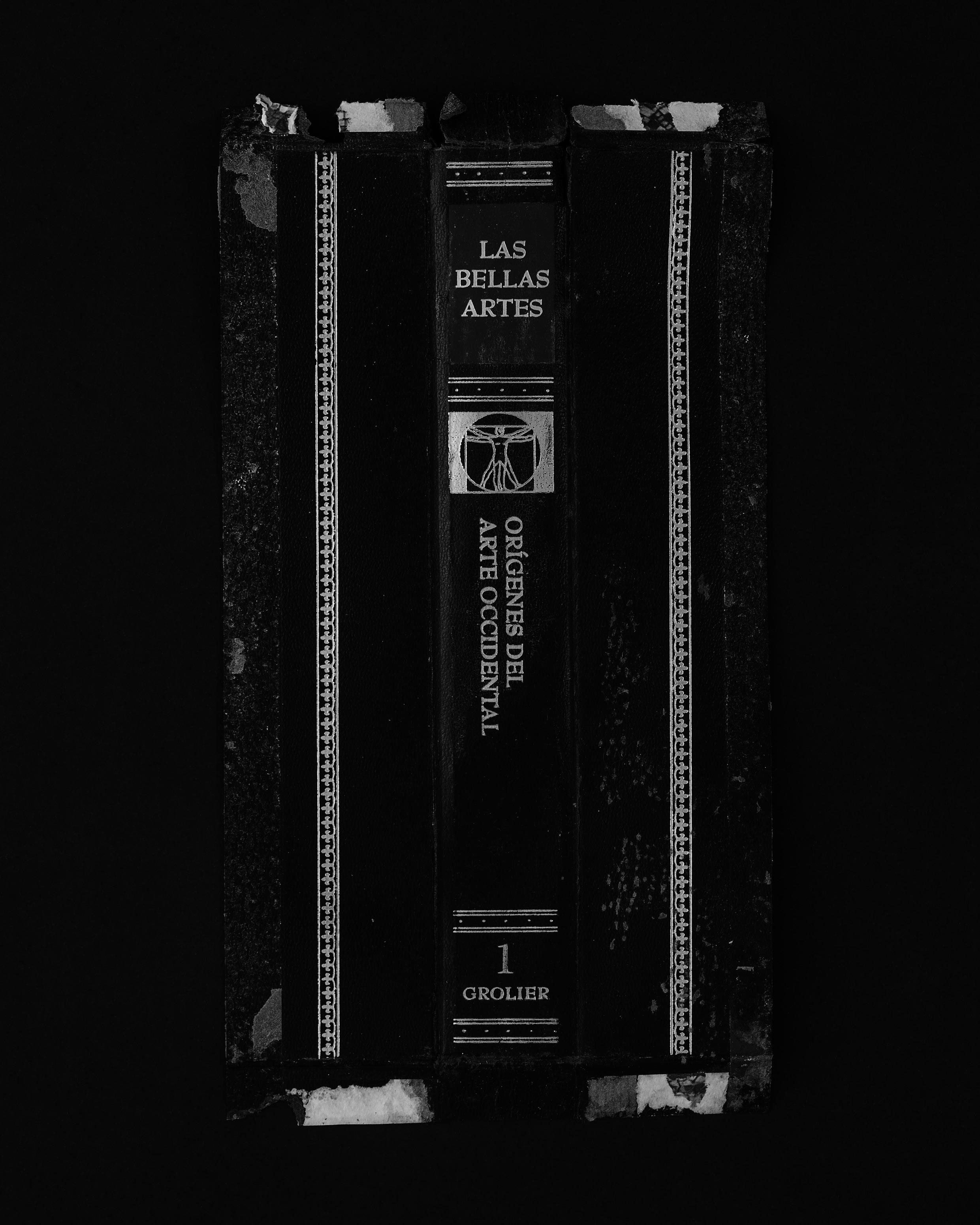 Grolier 01 - Orígenes del arte occidental